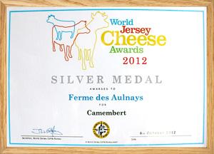 WCA2012-silver